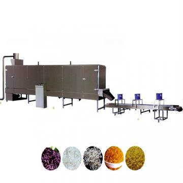 Professional Multifunctional Artificial Rice Machines/Processing Line/Production Line