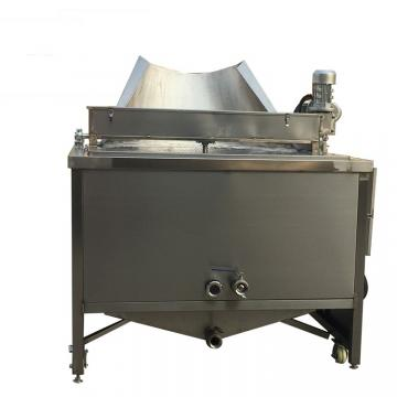Gas Deep Fryer for Sale