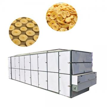 Freeze Dryer for Food/Fruits/Vegetables/Lyophilizer/Dryer/Vacuum Dryer